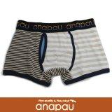 【anapau】 アナパウ  ボクサー パターン ボーダー BEG/WHT